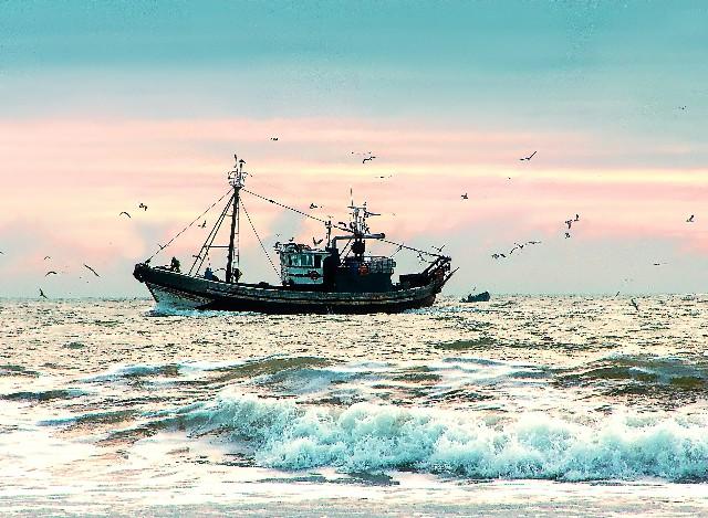 Garciden Pescado Marisco Atún