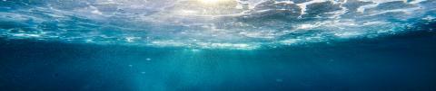 Garciden Atún - Pescado Azul