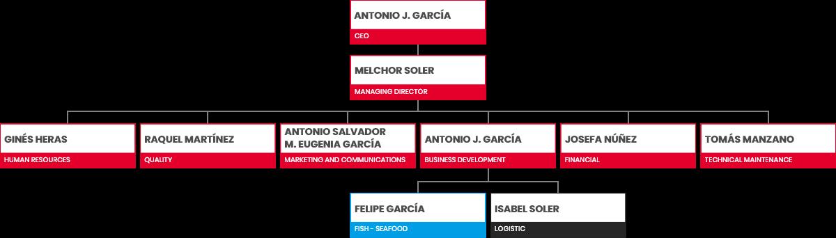 organitation chart
